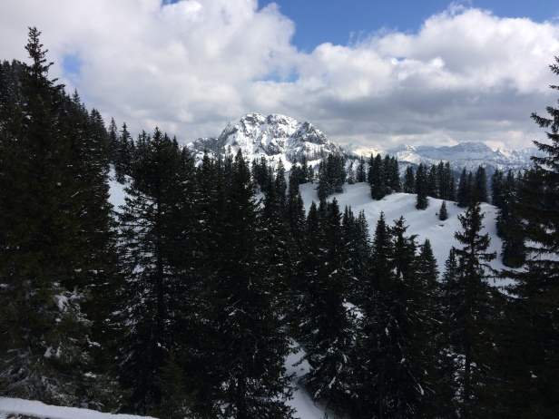 Austrian alps viewed from Mount Tegelberg